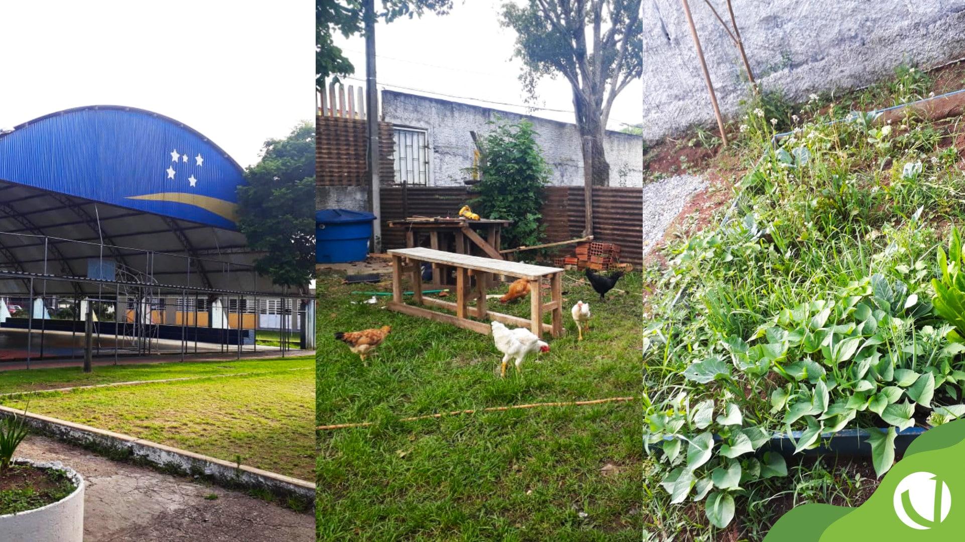 projeto jardim secreto